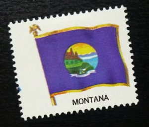 USA Posterv Stamp Flag MONTANA  C13