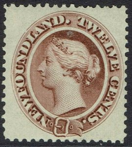 NEWFOUNDLAND 1894 QV 12C DEEP BROWN