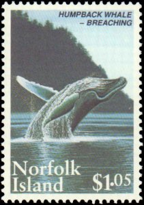 Norfolk Islands #573-575, Complete Set(3), 1995, Whales, Never Hinged