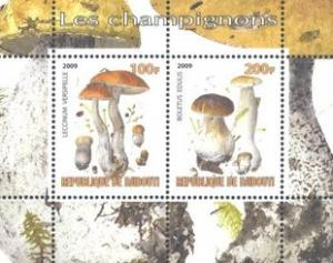 Djibouti 2009 Champignons Plants Mushrooms Fungi Nature M/S Stamps MNH (1)