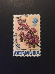 *Bermuda #262u