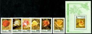 HERRICKSTAMP AZERBAIJAN Sc.# 598-604 Roses Set & S/S