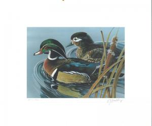 OKLAHOMA  #4 1983 STATE DUCK STAMP PRINT WOOD DUCK by Gerald Mobley 2 stamps