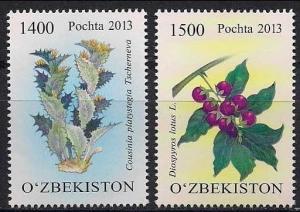 2013 Uzbekistan 1062-63 Flowers 7,20 €