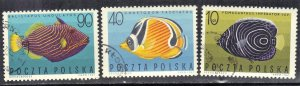 POLAND SCOTT# 1493+94+96  FISH 1967