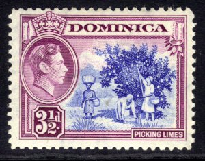 Dominica 1938 - 47 KGV1 3 1/2d Picking Limes MM SG 104a ( B605 )