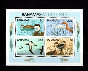 BAHAMAS - 1981 - BIRDS - DUCKS - REDDISH EGRET - TREE DUCKS + MINT MNH S/SHEET!