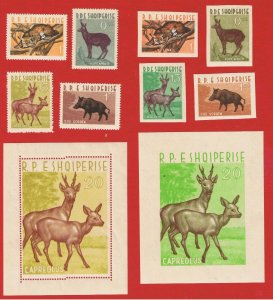 Albania #639-643 MNH OG imperforate & perforated  Animals w/Souvenir Sheets