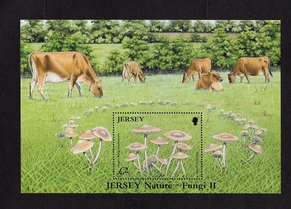 Jersey   #1189   2005  MNH  sheet mushrooms