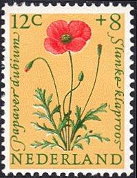 Netherlands # B346 mnh ~ 12¢ + 8¢ Flower - Red Poppy