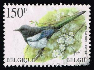 Belgium #1645 Pie bavarde Bird; Used (2.50)