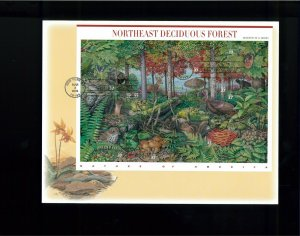 2005 New York Nature of America Northeast Deciduous Forest First Day Cover