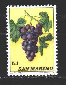 San Marino. 1973. 1031 from the series. Grapes, flora. MNH.