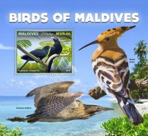 MALDIVES - 2019 - Birds of the Maldives - Perf Souv Sheet - MNH