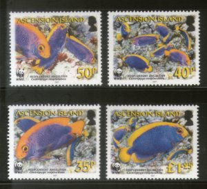 Ascension MNH 904-7 Resplendent Angelfish WWF 2007