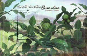*FREE SHIP Malaysia Aromatic Plants 2012 Fruit (MS) MNH *Unusual *scented Smell