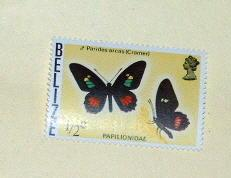 Belize - 345, MNH. Butterfly. SCV - $1.25