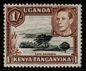 KENYA, UGANDA & TANGANYIKA SG145b 1949 1/= BLACK & BROWN p13x12½ MTD MINT