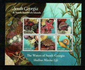 South Georgia: 2012, Shallow Marine Life, sheetlet,  MNH set