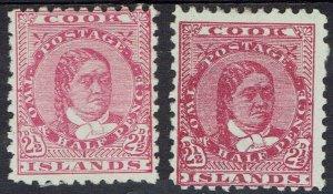 COOK ISLANDS 1893 QUEEN 21/2D BOTH SHADES WMK UPRIGHT PERF 11