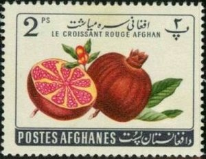 Afghanistan 1962 Pomegranate (Punica granatum) mh*
