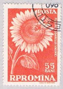 Romania 1270 Used Sun Flower 1959 (BP28521)