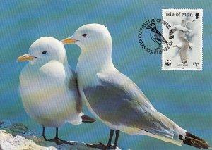 Isle of Man 1989 Maxicard Sc #402 13p Kittiwakes WWF