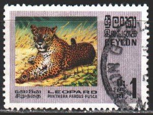 Sri Lanka. 1970. 398 from the series. Indian leopard fauna. USED.