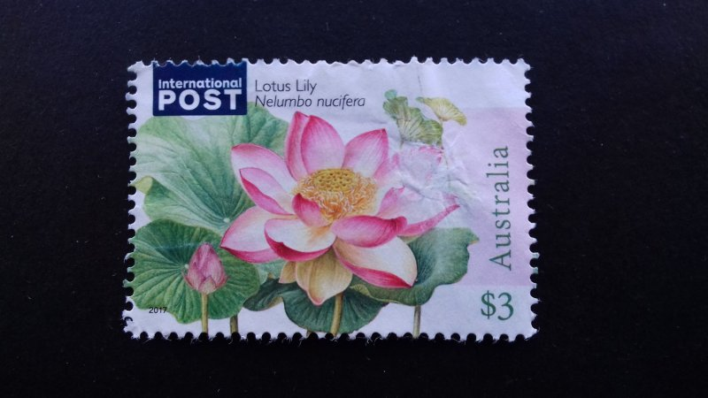 Australia 2017 Flora - Water Plants Used