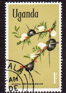 Uganda 124 - Used - Black-galled Acacia