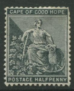 Cape of Good Hope - Scott 41 - Hope -1884 - Mint - Single 1/2p Stamp
