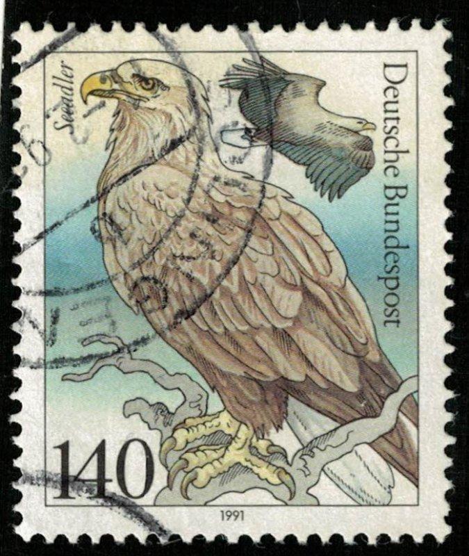 Bird (T-5176)