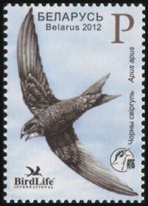 2012Belarus914Bird of the year Belarus. (Black Swift)