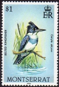 Montserrat 533 - Mint-NH - $1 Belted Kingfisher (1984) (cv $1.90)