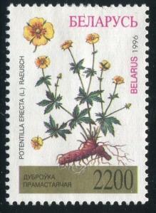 Belarus Sc#170 Used VG  (Be)