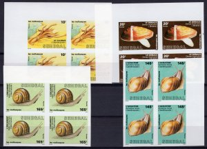 Senegal 1988 Sc#771/774 MOLLUSKS FAUNA Block of 4 IMPERFORATED MNH