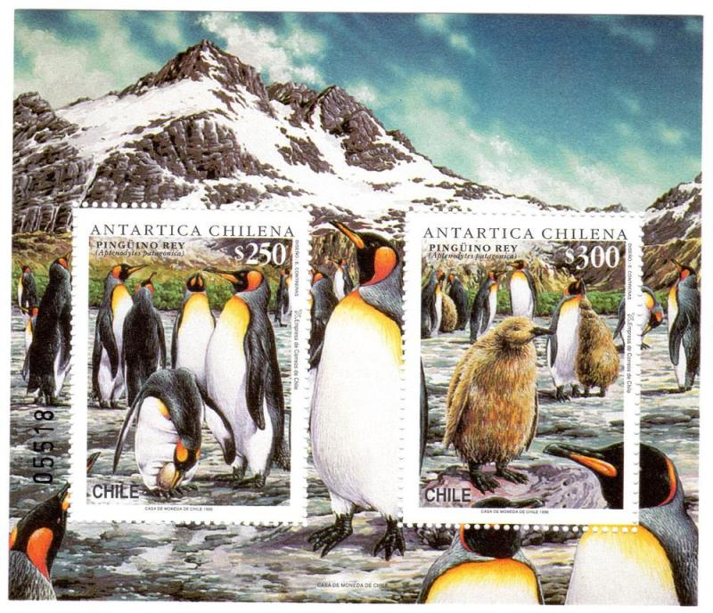 Chile 1996 Penguins/Antartic SS (1) MNH VF  Sc# 1183a