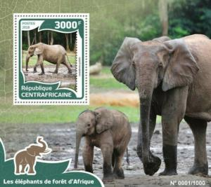 Central Africa - 2016 Elephants - Stamp Souvenir Sheet - CA16001b