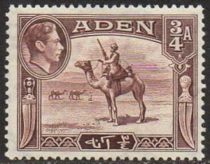 Aden 1939¾a Camel Corps MH