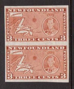Newfoundland #234F XF Mint Imperf Pair