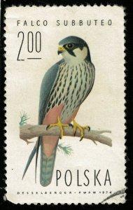 Bird (TS-2015)