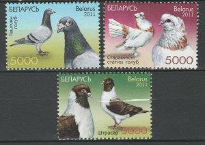 Belarus 2011 Birds, Doves, Pigeons 3 MNH stamps