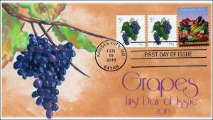 2016, Grapes, 5 cent, FDC, BW Cancel 16-057