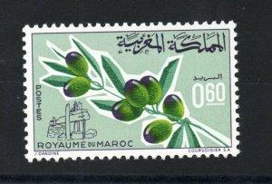 1966 - Morocco - Maroc - Olive tree  - Olivier - Complete set 1v.MNH**