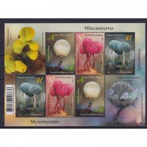 Belarus 2020 Mixomicetos  (MNH)  - Flora, Mushrooms