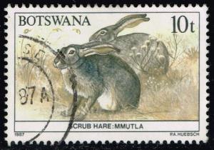 Botswana #411 Scrub Hares; Used (0.25)