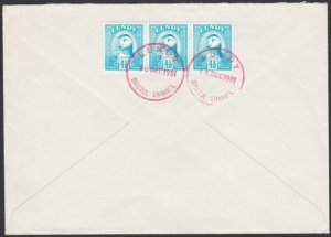 GB LUNDY 1981 cover  - Puffin stamps........................................F886