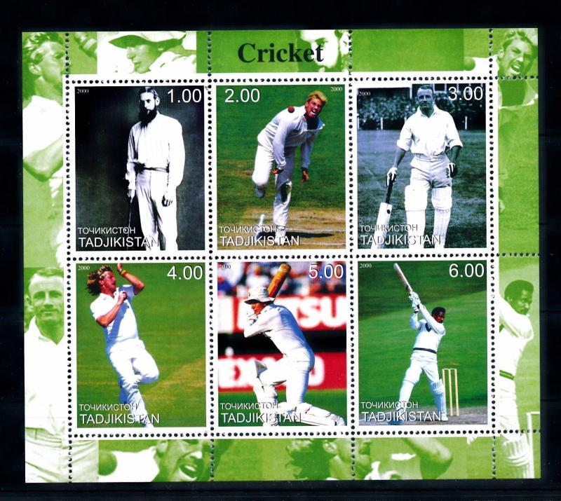 [58041] Tajikistan 2000 Cricket MNH Sheet