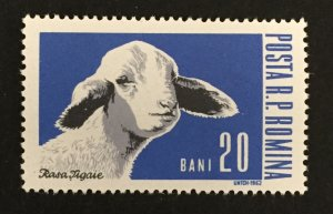 Romania 1962 #1527, Farm Animals, MNH.