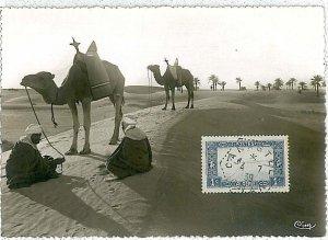 38757  - Algeria - POSTAL HISTORY -  MAXIMUM CARD    1939 : CAMELS & PALM TREES